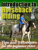 Introduction to Horseback Riding