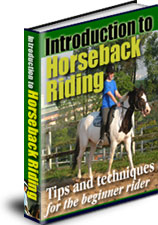 Introduction To Horseback Riding Image